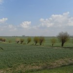 Boiensdorf - Landschaft 3