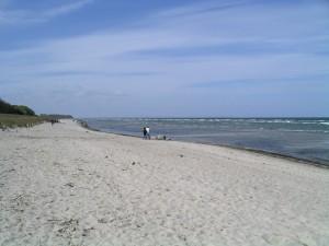 Boiensdorf - Strand 3